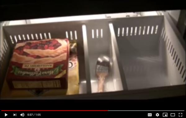 Sub-Zero Refrigerator Freezer Makes Noise When Door is Closed