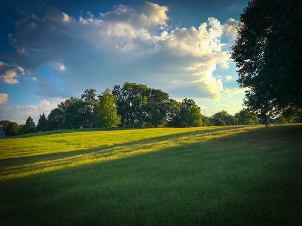 best parks in atlanta for picnics
