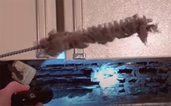 clean refrigerator coils
