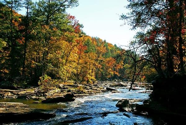 where-to-see-fall-foliage-in-Atlanta