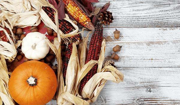 thanksgiving-dinner-planner